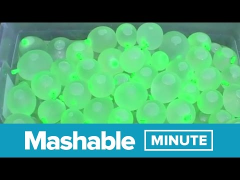 How to Start an Epic Water Balloon Fight   Mashable Minute   With Elliott Morgan