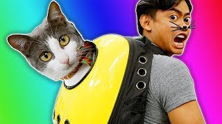 Trying Cat Gadgets You Never Knew About