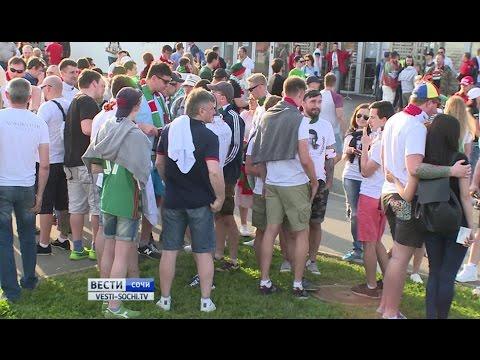 Сочинские полицейские задержали 64 болельщика после матча «Локомотив» — «Урал»