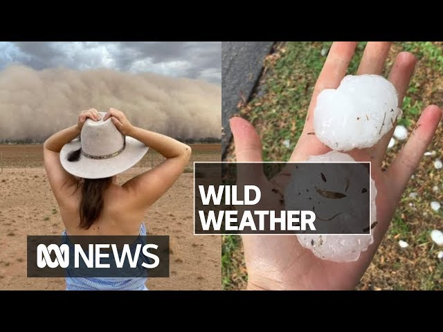 Giant hail hits Melbourne while dust storm blocks out the sun in western NSW  ABC News