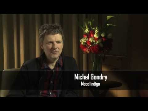 Michael Gondry Interview - Mood Indigo