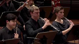Ludwig Van Beethoven Symphony No 5 In C Minor Op 67