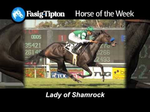 Fasig-Tipton Horse of the Week: Lady Of Shamrock