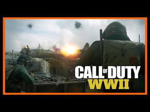 Call of Duty WWII PC Open Beta WAFFE 28