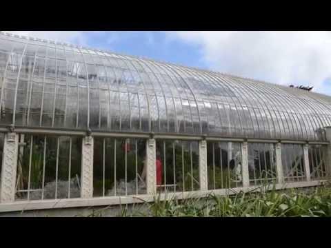Botanic Garden Glasnevin Dublino | Tuttoirlanda.com | HD Video