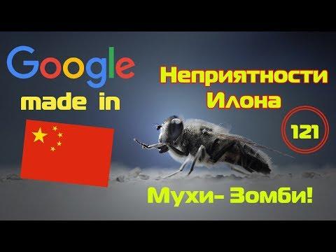 "Google -  made in China! ""Новые-старые"" неприятности Илона и мухи - зомби!"