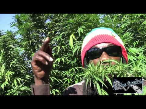 Marlon Asher - Ganja Cowboy [OFFICIAL VIDEO] By TRU REELZ PROD.