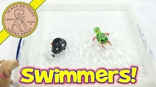 California Creations Z Windups Swimmers - Wilber The Whale and Topaz The - Wind Up ToysTurtle