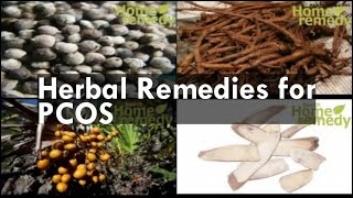 Download Lagu Herbal Remedies for PCOS Gratis STAFABAND