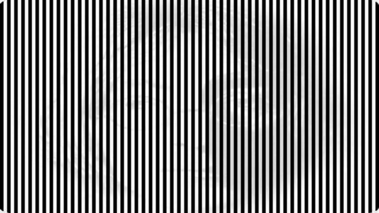 Les illusions d 39 optique - Livre illusion optique ...