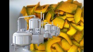 213 Manufacturer of Vacuum Fried Fruits Chips fryer