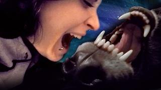 download lagu Love Nipping & Kissses W/ A Wolfdog gratis