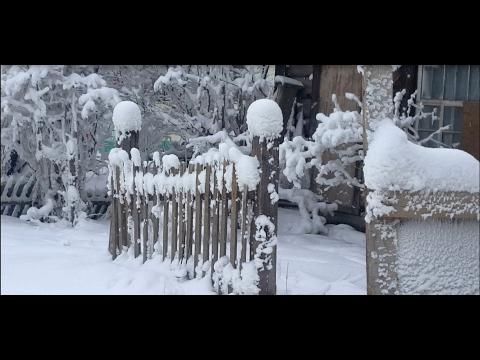 The beauty of snow, Yakutsk (Siberia)
