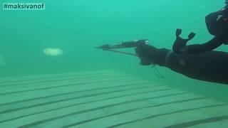 Техника подводной охоты, обучение подводной охоте