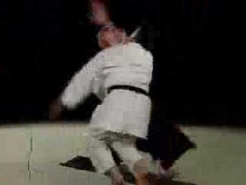 Excellent Aikido Demonstration Image 1