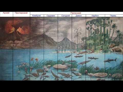Космос и происхождение жизни (рассказывает Дмитрий Вибе и др.)