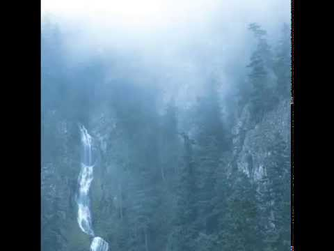 Wolves In The Throne Room - Diadem Of 12 Stars