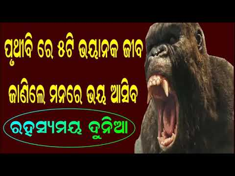 5 Most Dangerous Animals in India mysterious