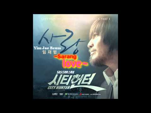 City Hunter Ost - Love (sarang) - Yim Jae Beum ~ Onscreen Lyrics & Translation video