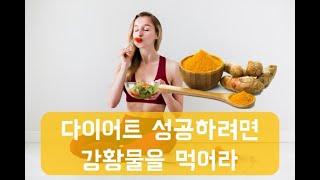 매일 강황물을 마시면 살이 쪽 빠진다!? [ 강황가구 다이어트의 모든것]콜레스테롤이   다이어트에 미치는 영향