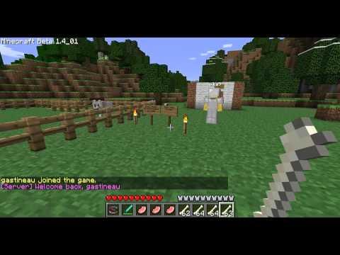 Minecraft - Les MDC 4 Les loups