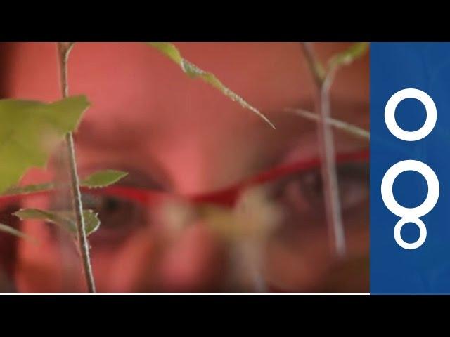 Futuris: the travelling greenhouse