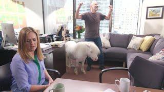 Web Extra: Jon Stewart Alternate Endings | Full Frontal with Samantha Bee | TBS