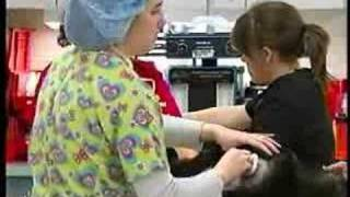 Vet School introducing cancer treatment for dogs