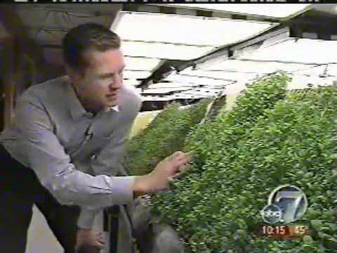 NASA-derived aeroponics grows food out of thin air