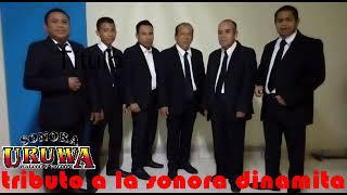 SPOT  STO   TOMAS MIAHUATLAN OAX