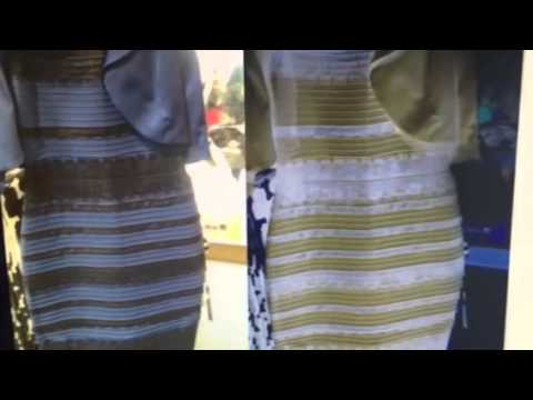 White And Gold White And Gold Or Blue And Black Ellen