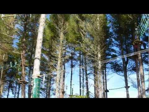 Adrenalin Forest Adventure Park