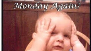 Monday Morning funny quotes | Monday Good morning Whatsapp status video| Happy Monday morning