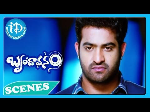 Jr N T R Ajay Fight Scene - Brindavanam Movie