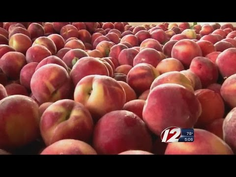 Some Ri Stores Affected In National Fruit Recall