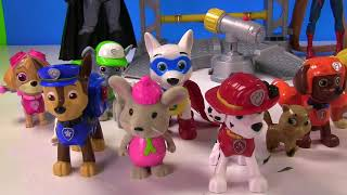 Paw Patrol Kids Toys Fun Time and Learning WITH BONUS TOYS!!!
