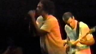 Watch Rage Against The Machine Sound Of Da Police video