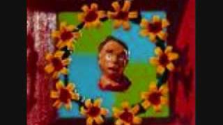 Marcy Playground - Ancient Walls of Flowers