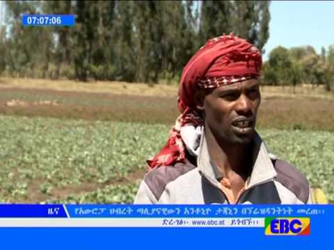 Latest Ethiopian News - EBC TV January 18, 2017