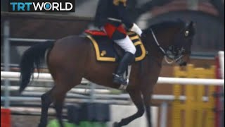 Macron's China Visit: Macron brings Xi Jinping a gift of a horse