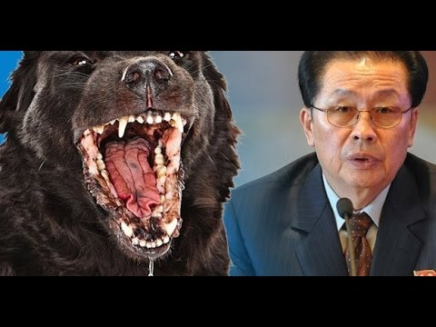 Did Kim Jong Un Have Wild Dogs Eat His Uncle?