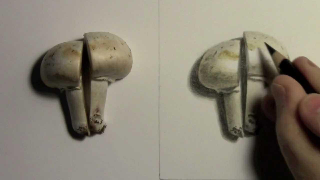 Realism Challenge 2 Mushroom Youtube