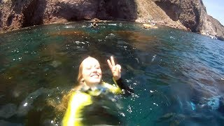 Snorkeling in Twin Harbors, Catalina Island