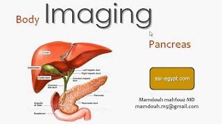 Imaging of Pancreas - DRE 10 - Dr Mamdouh Mahfouz (New)