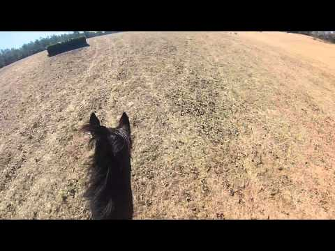 Helmet Cam on Pirate - XC at Paradise Farm, Aiken SC