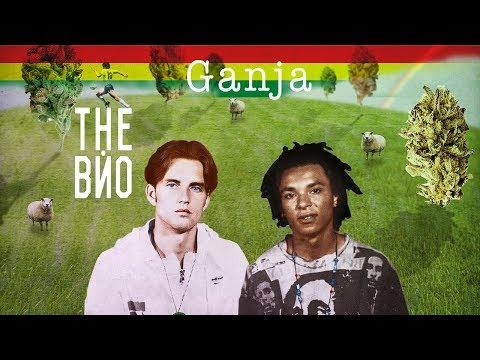 The Вйо - Ганжа