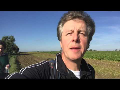 Walking The Courses: video blog - Chelmsford City to Great Yarmouth
