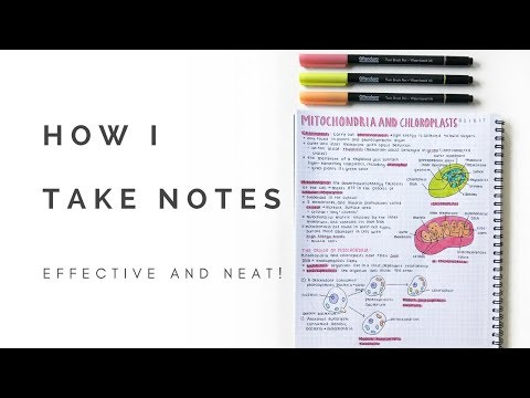 How I take notes (neat and effective)   studytee