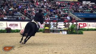 Best Of 2014 - Beezie Madden & Cortes 'C'