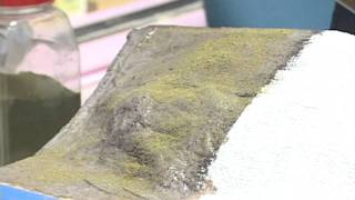 Model Railroader basic training video: How to make model railroad scenery
